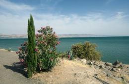 Sea of Galilee, Jerusalem. - November 2011