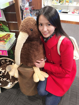 Huge kiwibird found from the souvenir shop just next to the restaurant! So cute! , Viggy - July 2016