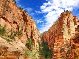 Towering red cliffs of Zion, World Traveler - October 2012