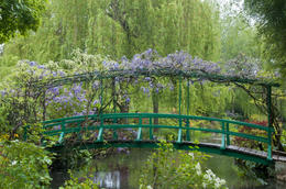 Monet's Japanese Footbridge which he painted many times during his 40 years there. , John B - May 2013