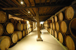 Lots of barrels inside the Musee Bruxellois de la Gueuze, Sasha Heseltine - May 2014