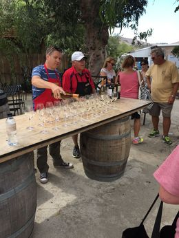 Another great tasting at this vineyard in Sonoma. Very nice museum of the Missions. , David M - August 2015