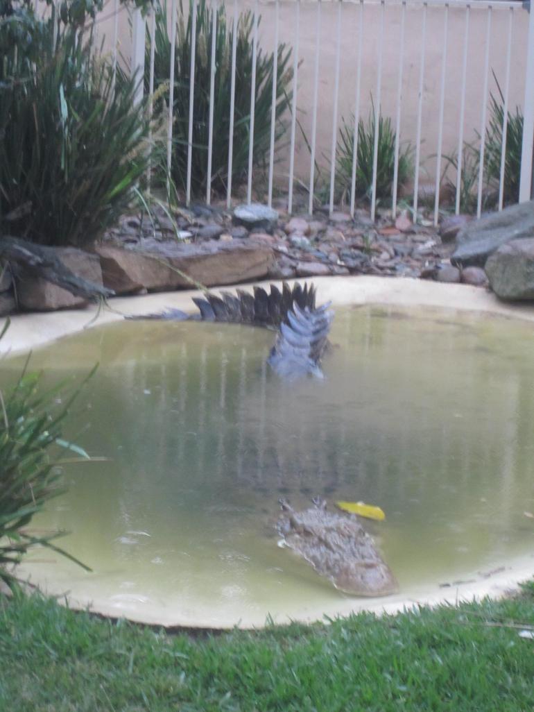 Crikey! - Sydney