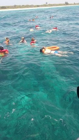 Snorkeling on the island , Diana H - July 2016