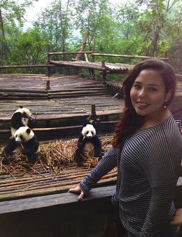 I'm with the five teenager pandas who are eating bamboo shoots for breakfast. I visited in early October of 2013, and it was cold and rain on this day. Pandas love this temperature so they were ... , Sandra K - October 2013