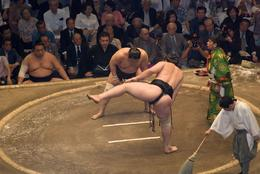 Let the Sumo games begin. Sumo Wrestling - Tokyo Tournament tour., Justin S - May 2008