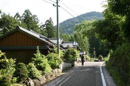 Kumano Kodo - March 2014