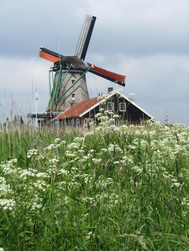 Windmill with nature - Amsterdam