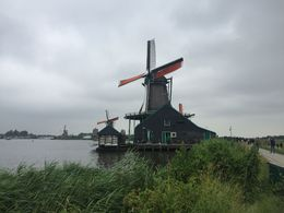 Zaanse Schans Windmills , Cindy O - June 2016
