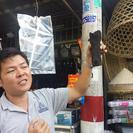 Recorrido por la Reserva de la biosfera Can Gio en lancha motora de lujo, Ho Chi Minh, VIETNAM