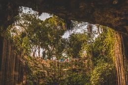At Ik-Kil Cenote , Jeff L - February 2017