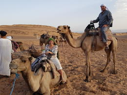 We are just about ready to start our camel trek back. One word Amazing , Marisa D - August 2017