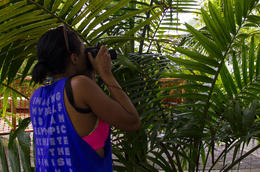 Celine snaps a photo of a creature crawling on a leaf at Yokahu tower during the rainforest tour on September 7, 2014. , Thomas G - September 2014