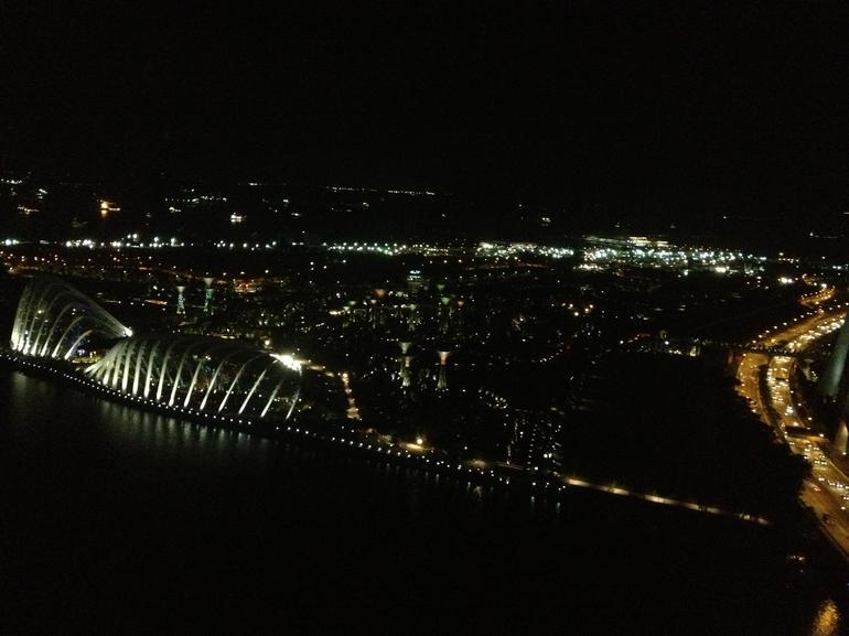 Singapore Flyer by night - Singapore