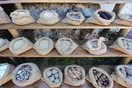 Some of the local spices found on Sun Island, Bandit - July 2014