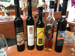 Wine tasting the local Sciacchetra wines from each village. , Warren P - June 2017