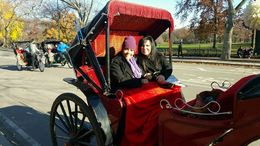 My daughter and I riding thru Central Park. An amazing afternoon...thanks Viator! , Lora M - December 2015