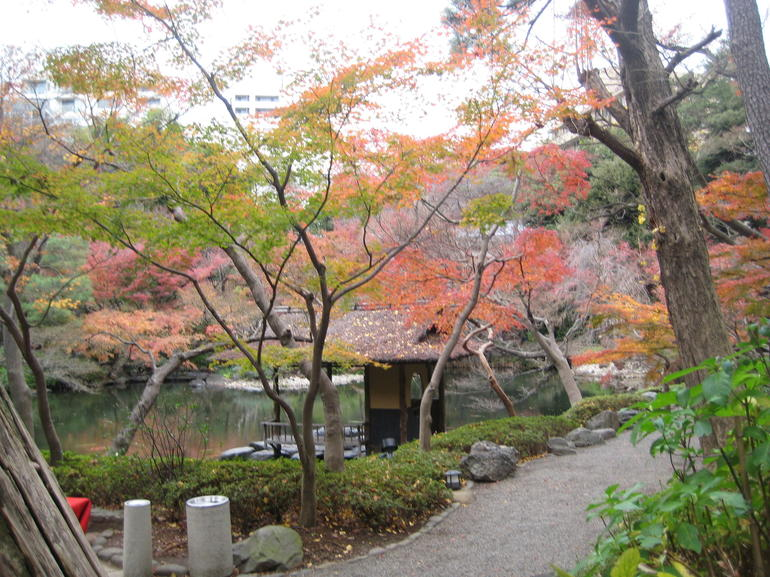 Garden at tea ceremony - Tokyo