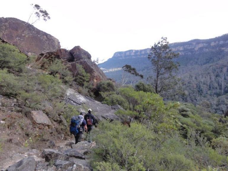 Heading back on the main trail toward home - Sydney