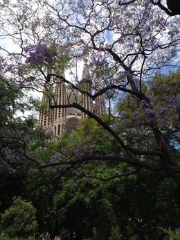 the gardens in front of sagrada familia , Bruce K - June 2014