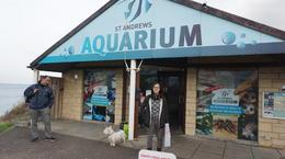 St.Andrew's Aquarium , Theresa - January 2017