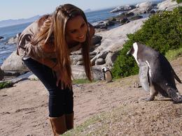 My wife bonding with a penguin, Brian B - September 2010