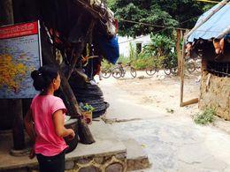 Village on Cat Ba island , Ninette M - November 2015
