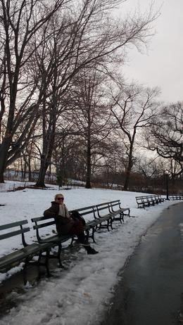 Central Park , cintiazucarvalho - February 2017