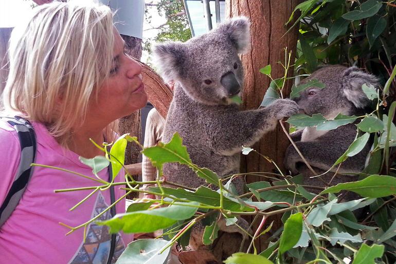 Taronga Zoo, Sydney - Sydney