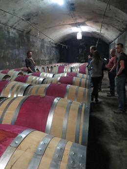 Barrels of wine , Karen G - May 2013