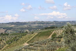 This is the Italy you don't see in the cities, but dream about. , Kathryn H - August 2011