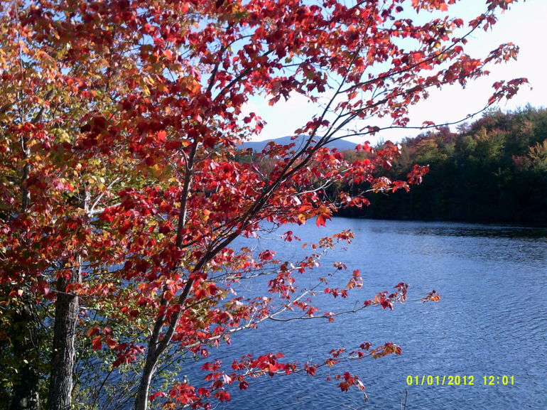 Autumn in New England: Fall Foliage Sightseeing Day-Trip with Lunch from Boston photo 30