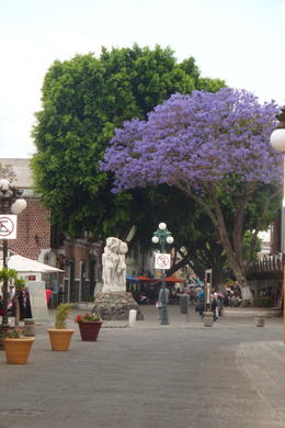 Streets of Puebla , Evgeny P - April 2012