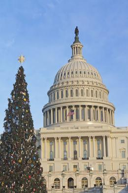 Christmas at the Capitol , Sharlene G - January 2014