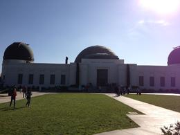 Griffith Observatory, Cat - November 2012