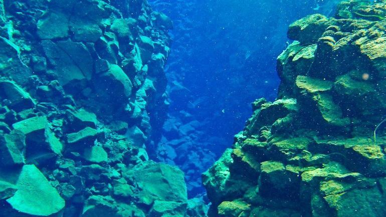 Snorkeling picture - Reykjavik