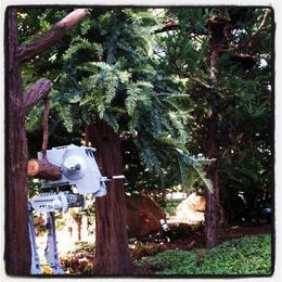 Endor scene , Skootre - December 2011