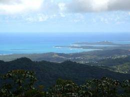 View From Yokahu Tower , Ericka M - November 2016