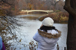Photographing beautiful Central Park , marcusdburnette - December 2016
