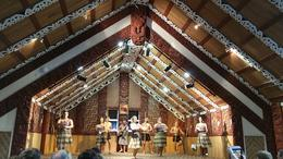Maori concert , Becky W - February 2017