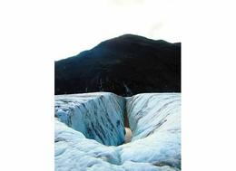 just part of the natural beauty of being on a glacier! , Casey G - September 2014