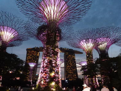 garden by the bay entrance fee singapore gardenthe bay ticket offer page 3 garden
