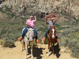 Old Spanish Trail Horseback Ride with Lunch, Carol R - June 2016