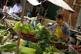 Market , Deana J - November 2013