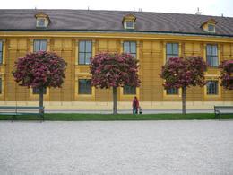 Original orange color of Schonbrunn walls, Nicoleta M - May 2010