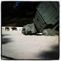 That walker is dust! , Skootre - December 2011