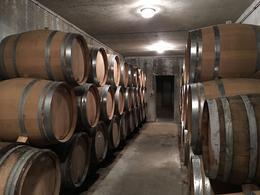 Nicolas Maillart Champagne cellar , Kelley G - May 2017