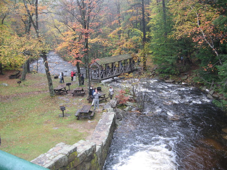 Autumn in New England: Fall Foliage Sightseeing Day-Trip with Lunch from Boston photo 18