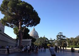 St Peter's Basilica and the Vatican Gardens., emmaknock - September 2016
