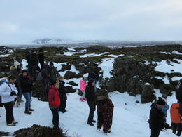 This is our tour group stopped at the highlight of the tour. , LeAnne F - December 2014